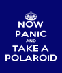 NOW PANIC AND TAKE A POLAROID - Personalised Poster A4 size