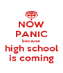 NOW PANIC because high school is coming - Personalised Poster A4 size