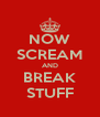 NOW SCREAM AND BREAK STUFF - Personalised Poster A4 size