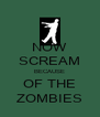 NOW SCREAM BECAUSE OF THE ZOMBIES - Personalised Poster A4 size