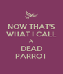 NOW THAT'S WHAT I CALL A DEAD PARROT - Personalised Poster A4 size