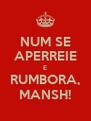 NUM SE APERREIE E RUMBORA, MANSH! - Personalised Poster A4 size