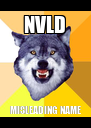 NVLD MISLEADING NAME - Personalised Poster A4 size
