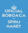 OFICIAL BOBOACA in SPIRU HARET - Personalised Poster A4 size