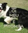 OI MEU NOME É PITOMBA - Personalised Poster A4 size