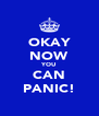 OKAY NOW YOU CAN PANIC! - Personalised Poster A4 size