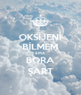 OKSİJENİ BİLMEM AMA BORA ŞART - Personalised Poster A4 size