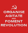 ORGANISE AGITATE AND FOMENT REVOLUTION - Personalised Poster A4 size