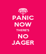 PANIC NOW THERE'S NO JAGER - Personalised Poster A4 size