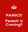 PANIC!!!  Pesach is Coming!! - Personalised Poster A4 size