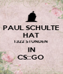 PAUL SCHULTE HAT 1322 STUNDEN   IN  CS::GO  - Personalised Poster A4 size