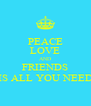 PEACE LOVE AND FRIENDS IS ALL YOU NEED - Personalised Poster A4 size