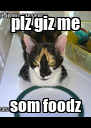 plz giz me som foodz - Personalised Poster A4 size