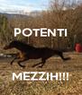 POTENTI    MEZZIH!!! - Personalised Poster A4 size