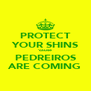 PROTECT YOUR SHINS 'cause PEDREIROS ARE COMING - Personalised Poster A4 size