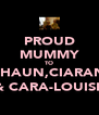PROUD MUMMY TO SHAUN,CIARAN & CARA-LOUISE - Personalised Poster A4 size