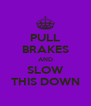 PULL BRAKES AND SLOW THIS DOWN - Personalised Poster A4 size