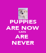 PUPPIES ARE NOW CATS  ARE  NEVER - Personalised Poster A4 size