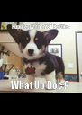 Puppies At the VET Be Like: What Up Doc'?  - Personalised Poster A4 size