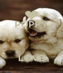 PUPPY    LOVE - Personalised Poster A4 size