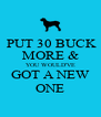 PUT 30 BUCK MORE & YOU WOULD'VE GOT A NEW ONE - Personalised Poster A4 size