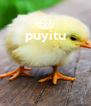 puyitu     - Personalised Poster A4 size