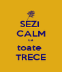 SEZI  CALM ca toate  TRECE - Personalised Poster A4 size