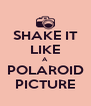 SHAKE IT LIKE A POLAROID PICTURE - Personalised Poster A4 size