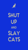SHUT UP AND SLAY CATS - Personalised Poster A4 size
