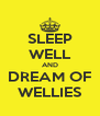 SLEEP WELL AND DREAM OF WELLIES - Personalised Poster A4 size