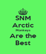 SNM Arctic Monkeys Are the Best - Personalised Poster A4 size