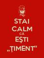 STAI CALM CĂ EŞTI ,,ŢIMENT'' - Personalised Poster A4 size