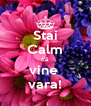 Stai Calm că vine  vara! - Personalised Poster A4 size