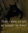 Stai calm ca nu ai nimic in beci - Personalised Poster A4 size