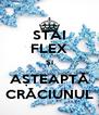 STAI FLEX ȘI AȘTEAPTĂ CRĂCIUNUL - Personalised Poster A4 size