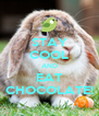 STAY COOL AND EAT CHOCOLATE! - Personalised Poster A4 size