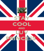 STAY COOL AND LUV PRINCESS  - Personalised Poster A4 size