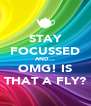 STAY FOCUSSED AND... OMG! IS THAT A FLY? - Personalised Poster A4 size