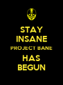 STAY INSANE PROJECT BANE HAS BEGUN - Personalised Poster A4 size