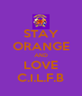 STAY ORANGE AND LOVE C.I.L.F.B - Personalised Poster A4 size