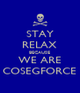 STAY RELAX BECAUSE WE ARE COSEGFORCE - Personalised Poster A4 size