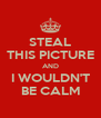 STEAL THIS PICTURE AND I WOULDN'T BE CALM - Personalised Poster A4 size