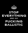 STOP EVERYTHING AND GO FUCKING BALLISTIC - Personalised Poster A4 size