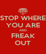 STOP WHERE YOU ARE AND FREAK OUT - Personalised Poster A4 size