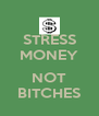 STRESS MONEY  NOT BITCHES - Personalised Poster A4 size