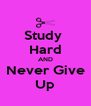 Study  Hard AND Never Give Up - Personalised Poster A4 size