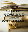 STUDY  NOW AND A DREAM WILL COME  TRUE - Personalised Poster A4 size