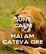 SUNT CALM SI MAI AM  CATEVA ORE - Personalised Poster A4 size