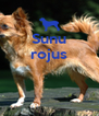 Sunu rojus    - Personalised Poster A4 size