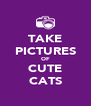 TAKE PICTURES OF CUTE CATS - Personalised Poster A4 size